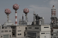 東京プロトコル