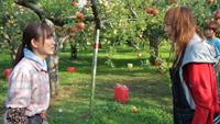 りんごのうかの少女3
