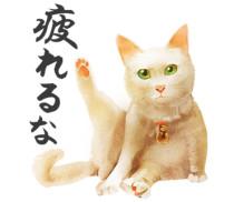 疲れるな猫侍LINEスタンプ