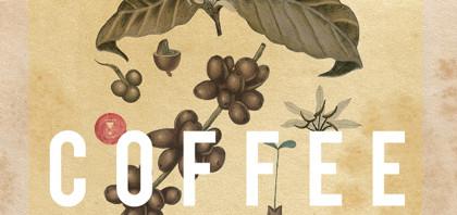 『A Film About Coffee』日本公開決定!美しい映像でコーヒーを