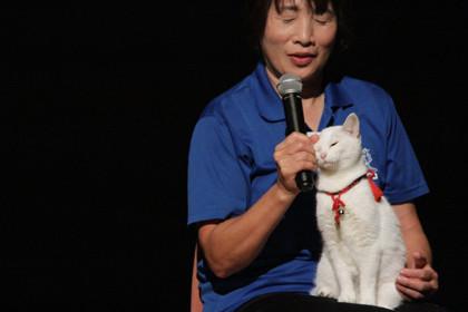 猫侍ティーチイン2