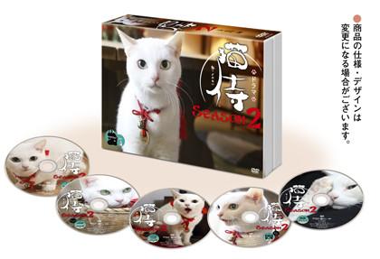 ドラマ「猫侍-SEASON2」DVD-BOX展開