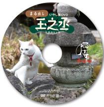 「猫侍-南の島へ行く」入場者特典第1弾