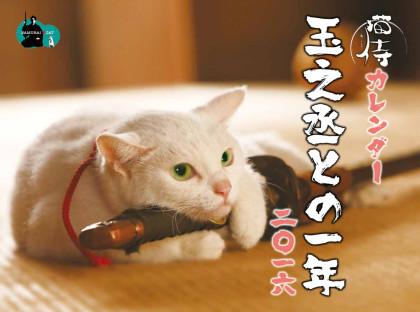 猫侍カレンダー 玉之丞との一年二〇一六