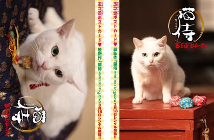 115号ポストカード猫侍1&2