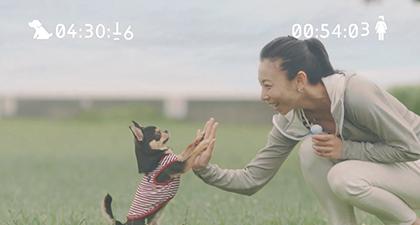"""映画『ペット』×Hondaが贈る""""ペットの時間""""特別動画公開!!"""