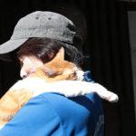 映画『猫忍』ぺットコーディネーター北村まゆみインタビュー到着