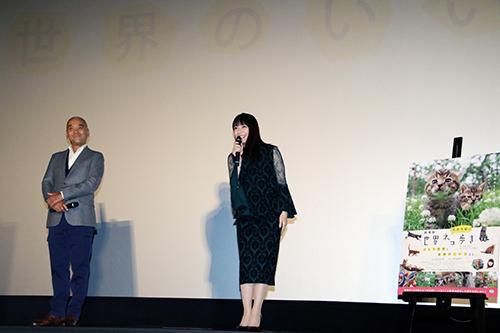 吉岡里帆『劇場版 岩合光昭の世界ネコ歩き』