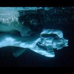 イエジー・スコリモフスキの伝説の青春映画『早春』Dリマスター公開決定!