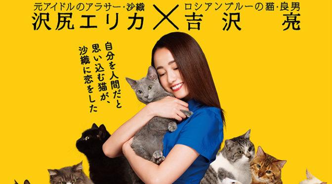 沢尻エリカ主演『猫は抱くもの』ロシアンブルーが吉沢亮!猫だくポスター解禁!