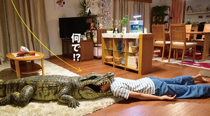 榮倉奈々ワニに喰われる!!「家に帰ると妻が必ず死んだふりをしています。」特報解禁