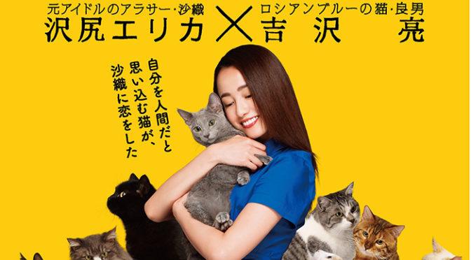 映画『猫は抱くもの』:特報完成!沢尻エリカが魅せる!吉沢亮 一筋の涙が・・