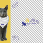 """猫の良男も大満足『猫は抱くもの』の前売り特典 """"猫抱く特製バンダニャ"""" キャンペーン"""