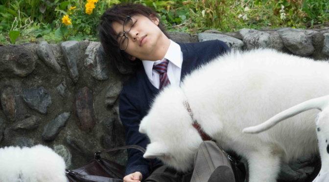 """犬に""""ミラきゅん""""されるクール男子、松岡広大。映画『兄友』メイキング映像解禁!"""