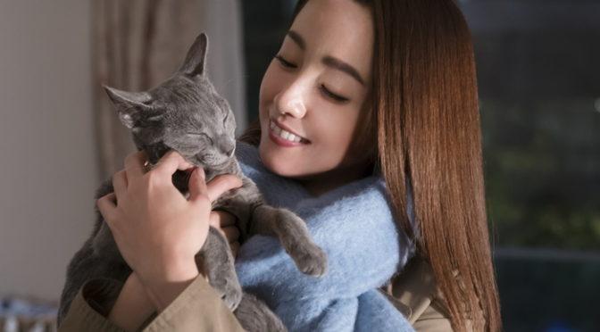 沢尻エリカ・吉沢亮『猫は抱くもの』第21回上海国際映画祭正式出品決定