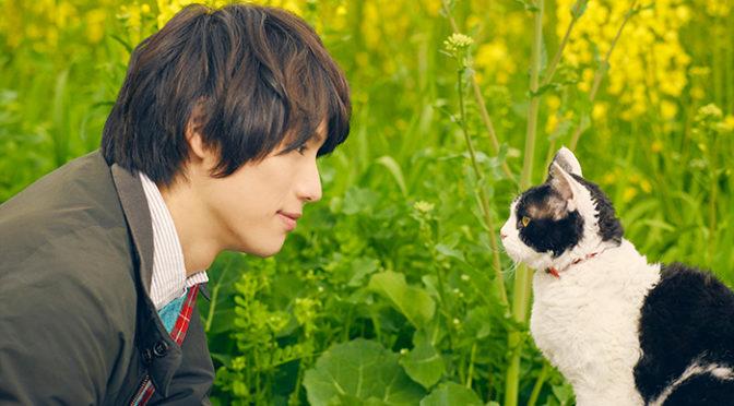 福士蒼汰『旅猫リポート』第22回ファンタジア国際映画祭にてワールドプレミア上映が決定