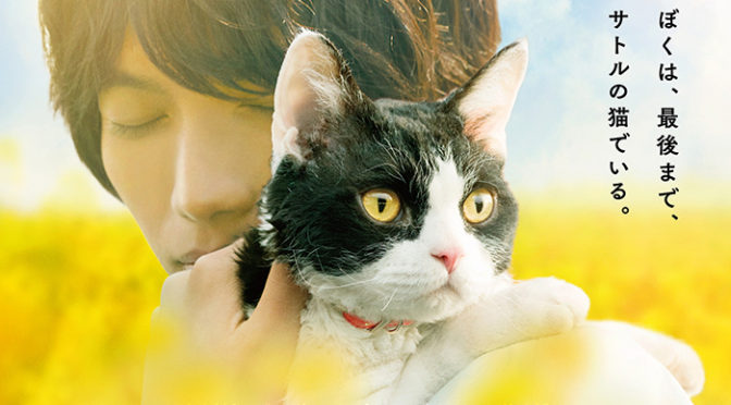 福士蒼汰『旅猫リポート』 本予告&ポスタービジュアル解禁