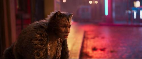キャッツ(原題:CATS)