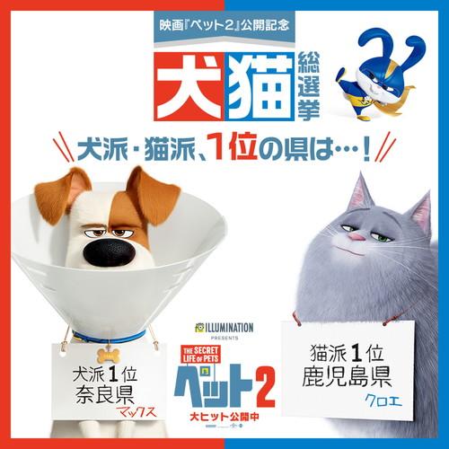 『ペット2』犬猫総選挙