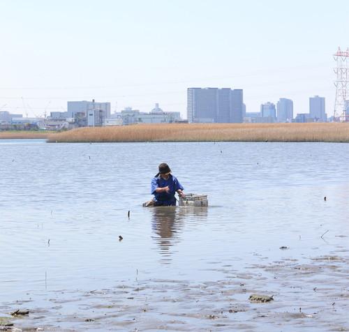 『東京干潟』村上浩康監督