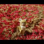 映画『劇場版ごん- GON, THE LITTLE FOX -』ギャラリー展示&連日トークイベント開催決定!!