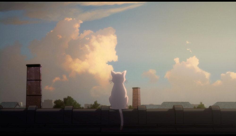 志田未来&花江夏樹からコメントも到着!『泣きたい私は猫をかぶる』 MV解禁!