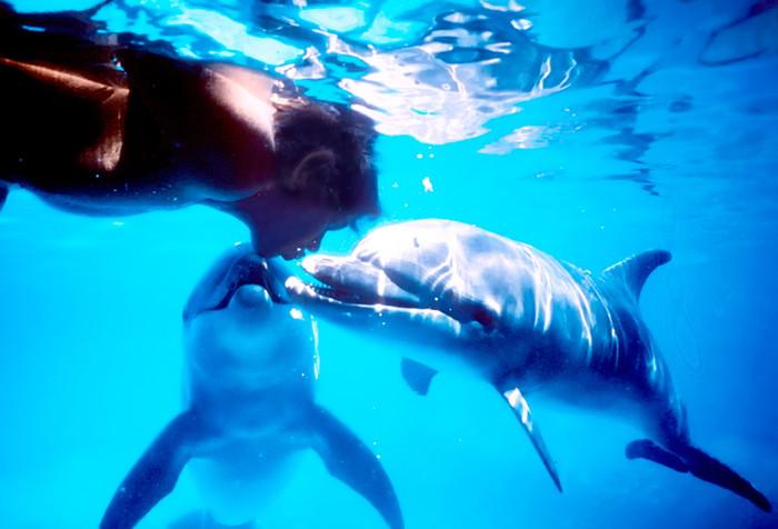 伝説の素潜りダイバー、ジャック・マイヨール。ドキュメンタリー『ドルフィン・マン~ジャック・マイヨール、蒼く深い海へ』